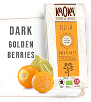 Dark Organic Chocolate Golden Berries